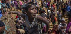 Xenophobic nationalism: Myanmar's curse