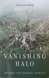Vanishing Halo