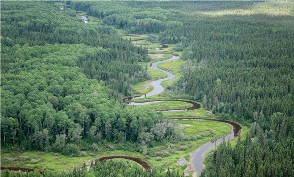 broadback_river_watershed